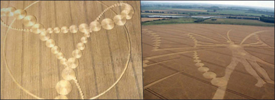 remko Delfgaauw crop circle hoaxes butterfly man 2009 and Project Fe-Male
