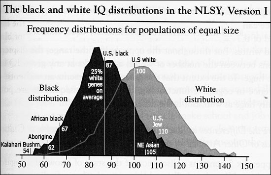 Black-white IQ gap, plus additions